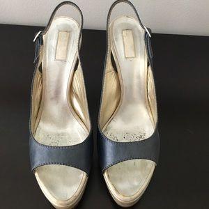 Roberto Cavalli Blue and Silver Platform Heels